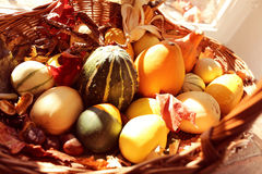 Squash and pumpkins in a basket Stock Photo