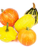 Squash and Pumpkins Stock Image