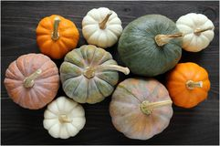 Squash and pumpkins Stock Photos