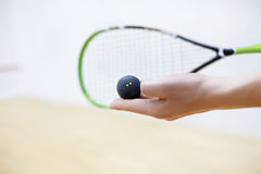 Squash racket and ball in hands Royalty Free Stock Images