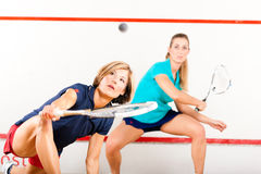Squash racket sport in gym, women competition. Two women playing squash as racket sport in gym, it might be a competition Royalty Free Stock Images