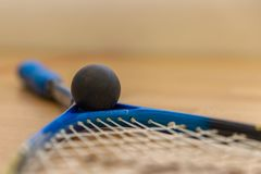 Squash rackets and balls on court royalty free stock images