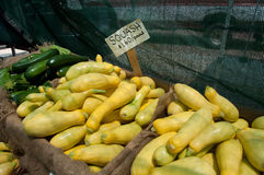 Squash for Sale at Farmer's Market Royalty Free Stock Photo