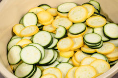 Squash slices in a bowl Stock Image