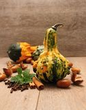 Squash and spice Royalty Free Stock Photo