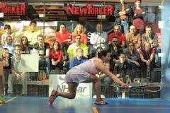 Free Squash - Tereza Svobodova Stock Photo - 51375390
