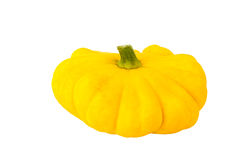 Squash vegetable isolated on white Royalty Free Stock Images