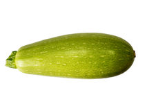 Squash (vegetable marrow)  isolated on white background with clipping path. Closeup with no shadows.  Vegetable.  Food. Eating veg Royalty Free Stock Photos