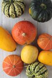 Squash vegetable selection Royalty Free Stock Images