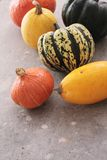 Squash vegetable selection Royalty Free Stock Photography