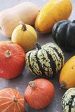 Squash vegetable selection Stock Photography