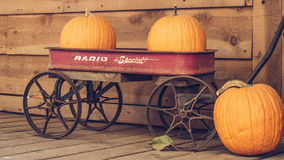Squash on Wagon Toy Photography Royalty Free Stock Photos