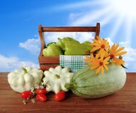 Squash, zucchini and bell pepper in a basket on a background of blue summer sky Stock Image