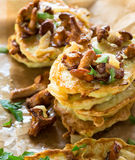 Squash and  zucchini fritters Royalty Free Stock Photo