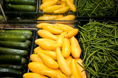 Squash, Zucchini, and Green Beans Royalty Free Stock Photography
