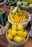 Squash, zucchini, and other vegetables. Summer vegetables in wicker baskets at local farmers' market stock photos