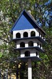 Squashbox. Caring for animals and birds, the problems of bird survival in the city. The natural environment stock photo