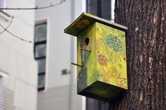 Squashbox Gevend voor dieren en vogels, de problemen van vogeloverleving in de stad royalty-vrije stock foto