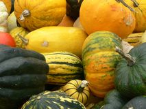 Squashes. An assortment of squash in a market Royalty Free Stock Photo