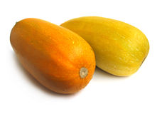 Squashes Royalty Free Stock Photo