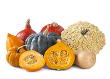 squashes Imagens de Stock Royalty Free