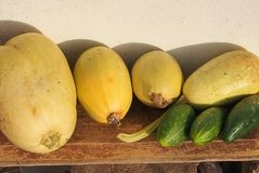 Squashes and Cucumbers Royalty Free Stock Images