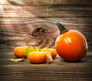 Squashes and pumpkins on wooden table background Royalty Free Stock Photo