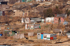 Squatter camp africa. Poor squatter camp in africa with shacks in winter Royalty Free Stock Photo