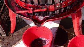 Squeezer σταφυλιών κρασιού απόθεμα βίντεο