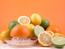 Squeezer do citrino Fotos de Stock Royalty Free