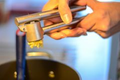 Squeezes garlic in the press. Woman squeezes garlic in the press Royalty Free Stock Images