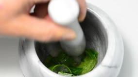 Squeezing Aloe vera juice stock video