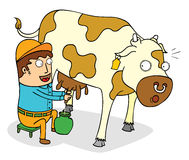 Squeezing cow milk. Illustration of a man squeezing cow milk Royalty Free Stock Photo