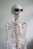 Squelette avec des lunettes de soleil images stock