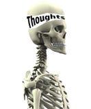 Squelette avec des pensées ouvertes Images libres de droits