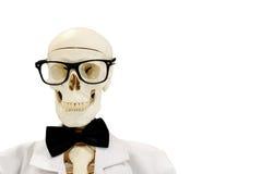 Squelette avec le noeud papillon et les verres photo stock