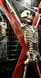Squelette de BDSM Image libre de droits