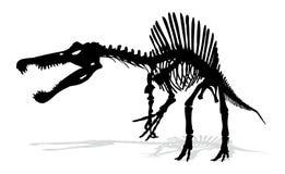 Squelette de dinosaure Photo stock