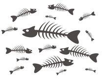 Squelette de poissons Photographie stock