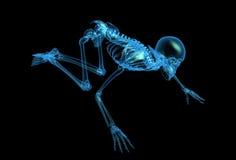 Squelette de rayon X illustration stock