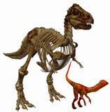 Squelette de Trex illustration stock