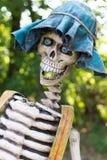 Squelette drôle Photographie stock