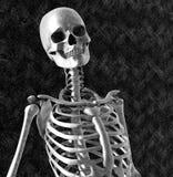 Squelette entouré par Darkness Images libres de droits