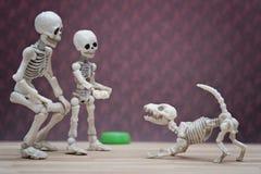 Squelette et son chien squelettique Photos libres de droits