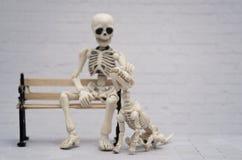 Squelette et son chien squelettique Image stock