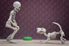 Squelette et son chien squelettique Images libres de droits