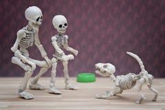Squelette et son chien squelettique Image libre de droits