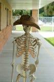Squelette humain avec le chapeau images libres de droits