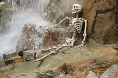 Squelette sous la cascade Photo stock