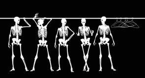 Squelettes dans le cabinet Photographie stock